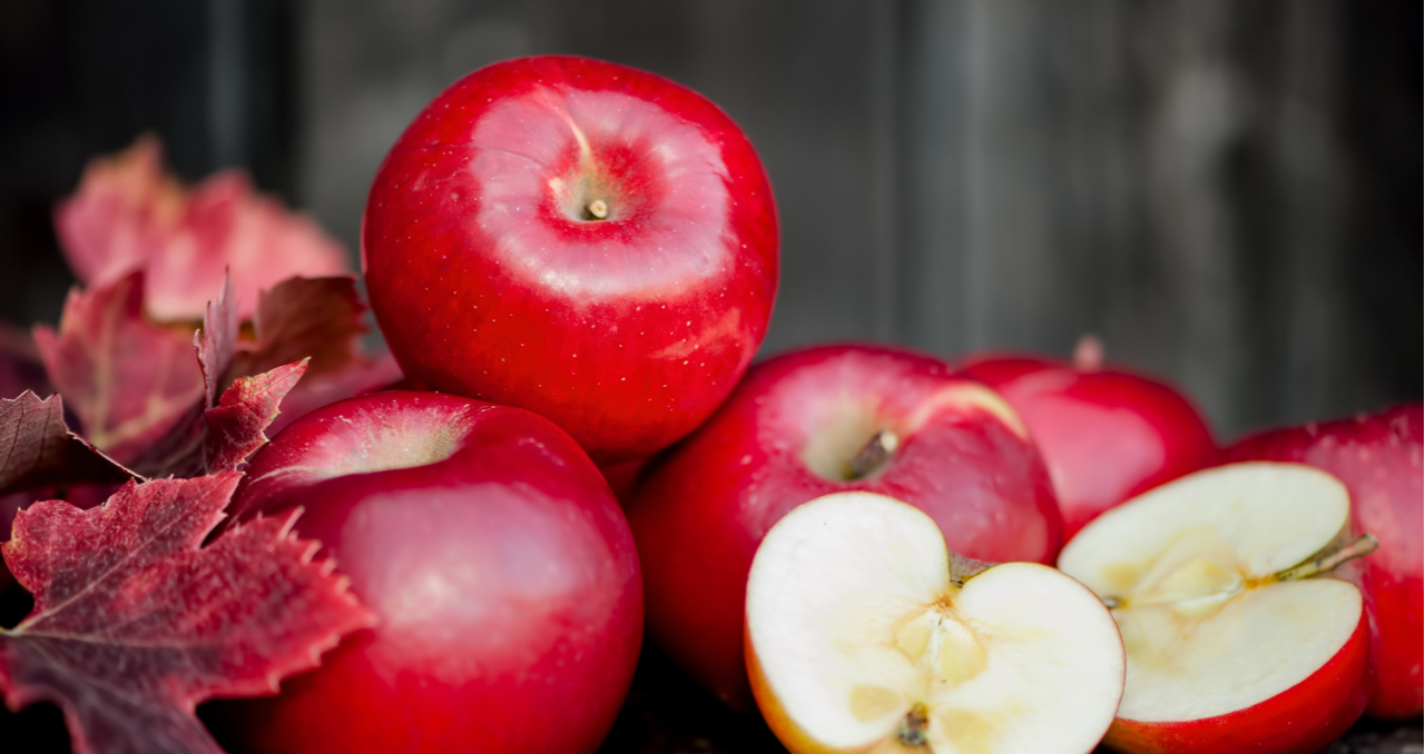 Looking for Apple Orchards for Sale? Read This Guide First