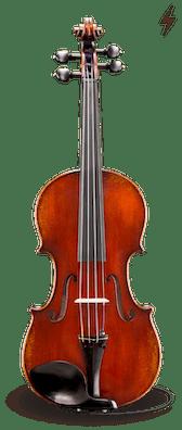 Electro Acoustic VL501-EAV