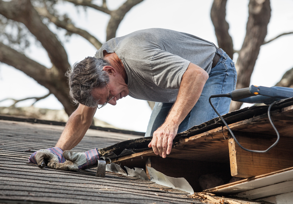 roof inspector working